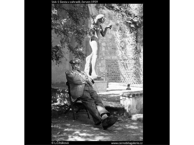 Siesta v zahradě (166-1), Praha 1959 červen, černobílý obraz, stará fotografie, prodej