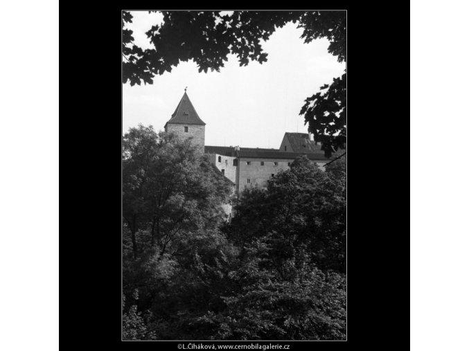 Černá věž mezi listovím (359-2), Praha 1959 , černobílý obraz, stará fotografie, prodej