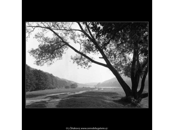 Vltava cestou z Roztok (3183), žánry - Praha 1964 září, černobílý obraz, stará fotografie, prodej