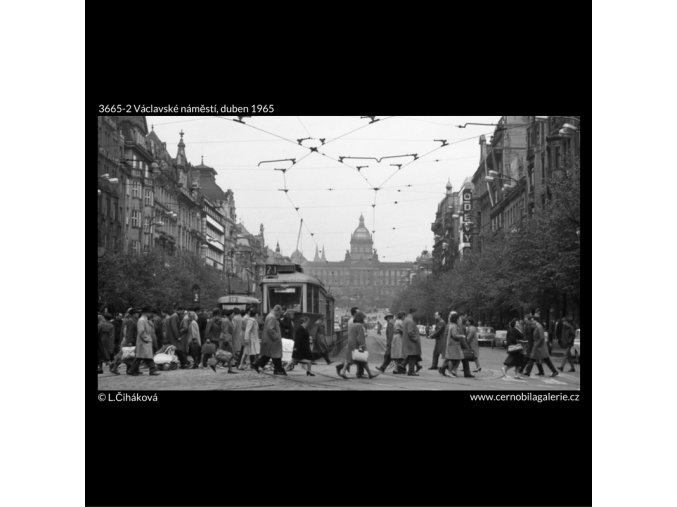 Václavské náměstí (3665-2), Praha 1965 duben, černobílý obraz, stará fotografie, prodej
