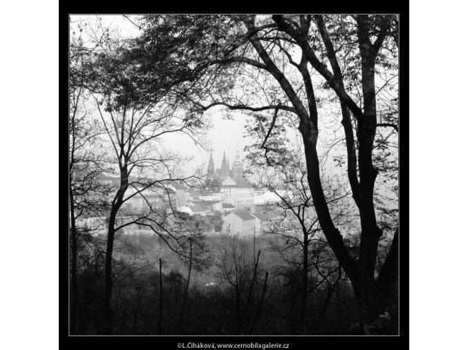 Pražský hrad skrz větve stromů (964-3), Praha 1960 listopad, černobílý obraz, stará fotografie, prodej