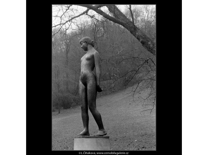 Čtrnáctiletá (4313-3), Praha 1966 únor, černobílý obraz, stará fotografie, prodej