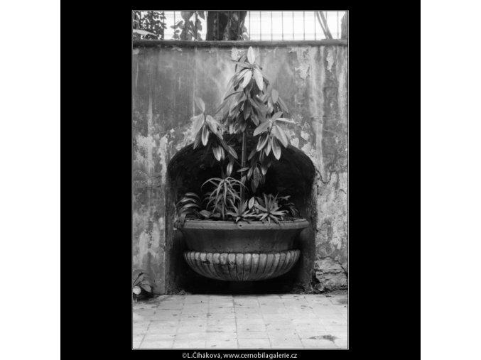 Někdejší kašna (5474), Praha 1967 srpen, černobílý obraz, stará fotografie, prodej