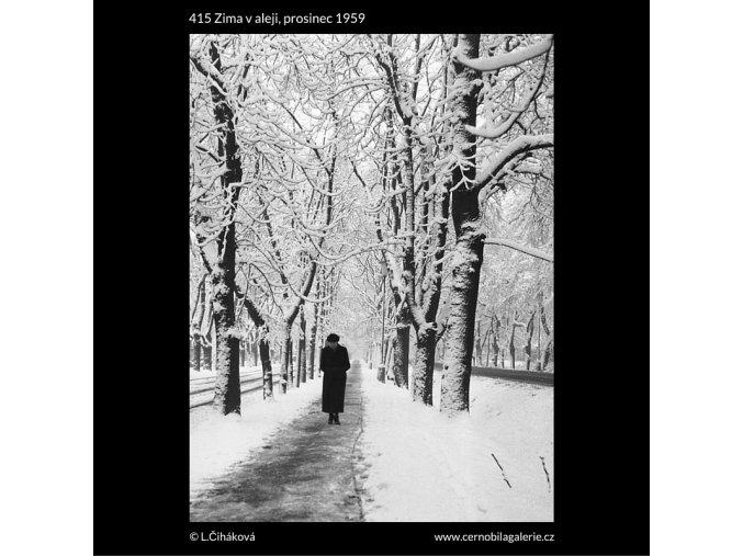 Zima v aleji (415), žánry - Praha 1959 prosinec, černobílý obraz, stará fotografie, prodej
