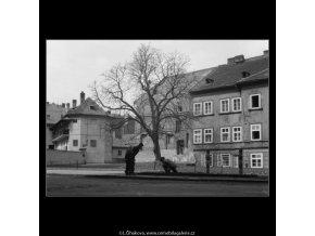 Kluci na Kampě (526), žánry - Praha 1960 duben, černobílý obraz, stará fotografie, prodej