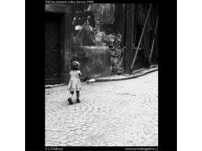 Na Jánském vršku (700), žánry - Praha 1960 červen, černobílý obraz, stará fotografie, prodej