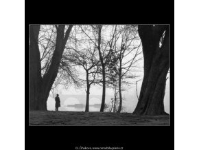 Nostalgie v mlžném oparu (724-2), žánry - Praha 1958 zima, černobílý obraz, stará fotografie, prodej