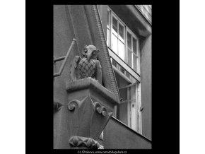 Sova na domě (5212), Praha 1967 březen, černobílý obraz, stará fotografie, prodej