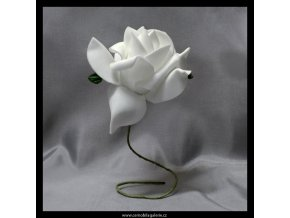 Růže pěnová II