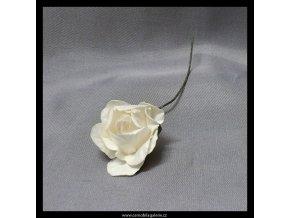 Růže Mini slonová kost