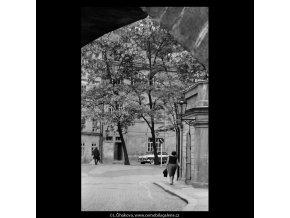 Kampa (5335), Praha 1967 květen, černobílý obraz, stará fotografie, prodej