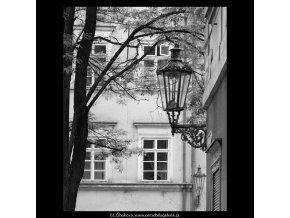 Z Kampy (5303-1), Praha 1967 květen, černobílý obraz, stará fotografie, prodej