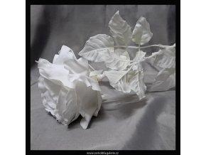 Růže bílá new 68