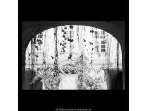 Větvoví, oblouk, okna (5624-2), žánry - Praha 1967 září, černobílý obraz, stará fotografie, prodej