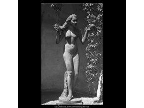 Dar nebes a země (166-3), Praha 1959 červen, černobílý obraz, stará fotografie, prodej