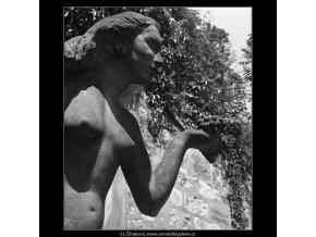 Dar nebes a země (166-4), Praha 1959 červen, černobílý obraz, stará fotografie, prodej