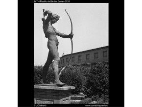 Plastika lučištníka (167-4), Praha 1959 červen, černobílý obraz, stará fotografie, prodej