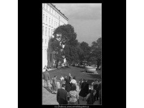 Vstupní část jižních zahrad (266-11), Praha 1959 , černobílý obraz, stará fotografie, prodej