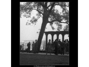 V jižních zahradách Hradu (266-12), Praha 1959 , černobílý obraz, stará fotografie, prodej