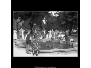U jezírka v jižních zahradách (266-13), Praha 1959 , černobílý obraz, stará fotografie, prodej