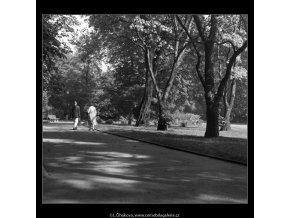 Chotkovy sady (380), Praha 1959 , černobílý obraz, stará fotografie, prodej