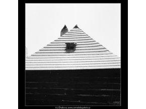 Střecha dřevěného domku (599-1), Praha 1959 , černobílý obraz, stará fotografie, prodej