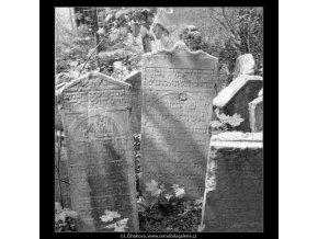 Ze židovského hřbitova (608-8), Praha 1960 květen, černobílý obraz, stará fotografie, prodej