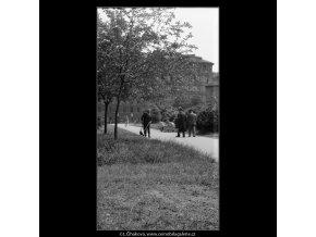 Procházka Kampou (637-10), Praha 1960 červen, černobílý obraz, stará fotografie, prodej
