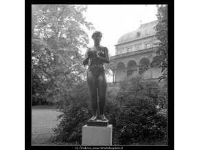 Dívka s jablkem (642-1), Praha 1960 červen, černobílý obraz, stará fotografie, prodej