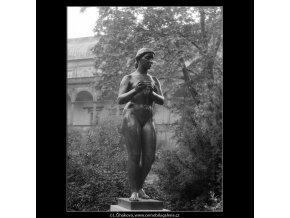Dívka s jablkem (642-4), Praha 1960 červen, černobílý obraz, stará fotografie, prodej