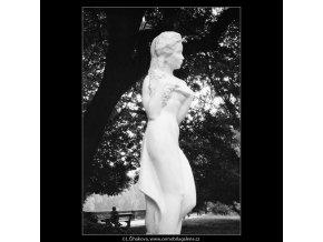 Réva (664-3), Praha 1960 červen, černobílý obraz, stará fotografie, prodej