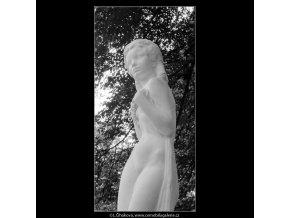 Réva (664-4), Praha 1960 červen, černobílý obraz, stará fotografie, prodej