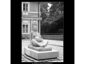 Hrnčířka (712-3), Praha 1960 červen, černobílý obraz, stará fotografie, prodej