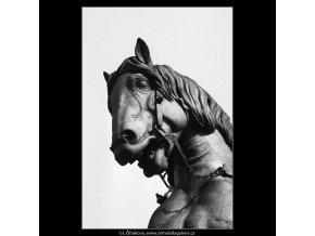 Hlava koně J.Žižky (989-2), Praha 1960 říjen, černobílý obraz, stará fotografie, prodej
