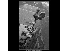 Kohout na špičce (963-1), Praha 1960 listopad, černobílý obraz, stará fotografie, prodej