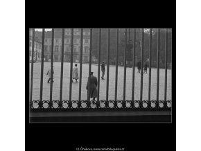 Pohled přes mřížoví (930-2), Praha 1960 říjen, černobílý obraz, stará fotografie, prodej