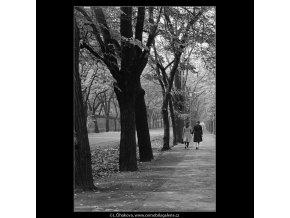 Dvě dívky (983-3), žánry - Praha 1960 podzim, černobílý obraz, stará fotografie, prodej