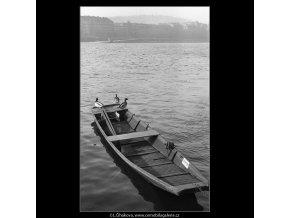 Kachny na Vltavě (1059-1), žánry - Praha 1961 leden, černobílý obraz, stará fotografie, prodej