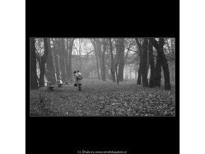 Střelecký ostrov (1377), žánry - Praha 1961 listopad, černobílý obraz, stará fotografie, prodej