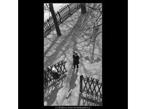 Předjaří na ostrově (1520), Praha 1962 březen, černobílý obraz, stará fotografie, prodej