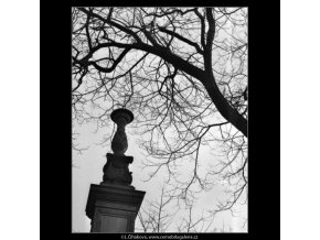 Zátiší (1424), žánry - Praha 1962 , černobílý obraz, stará fotografie, prodej