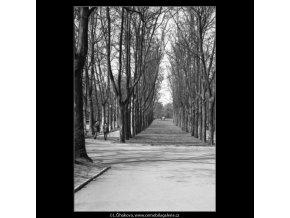 Pohled alejí (1566), žánry - Praha 1962 duben, černobílý obraz, stará fotografie, prodej
