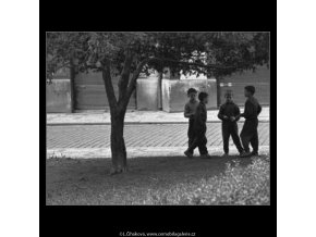Kluci (1633-1), žánry - Praha 1962 květen, černobílý obraz, stará fotografie, prodej