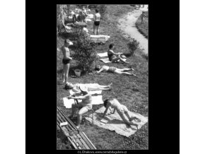 Z plovárny (1822), žánry - Praha 1961 , černobílý obraz, stará fotografie, prodej