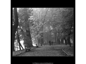 Rodina na cestě (1975-1), žánry - Praha 1962 , černobílý obraz, stará fotografie, prodej