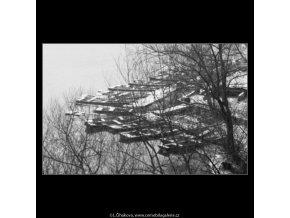 Loďky, sníh a větvoví (1988), žánry - Praha 1963 leden, černobílý obraz, stará fotografie, prodej