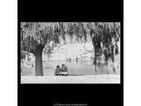 Na Olšanské třídě (1827), žánry - Praha 1962 , černobílý obraz, stará fotografie, prodej