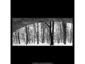 Stromy a oblouk mostu (2037), žánry - Praha 1963 zima, černobílý obraz, stará fotografie, prodej