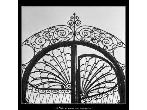 Detail mřížových vrat (2127), Praha 1963 duben, černobílý obraz, stará fotografie, prodej