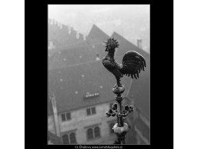 Kohout na špici (2205-1), Praha 1963 květen, černobílý obraz, stará fotografie, prodej